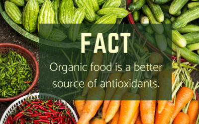 Will Organic Food Really Change My Health?